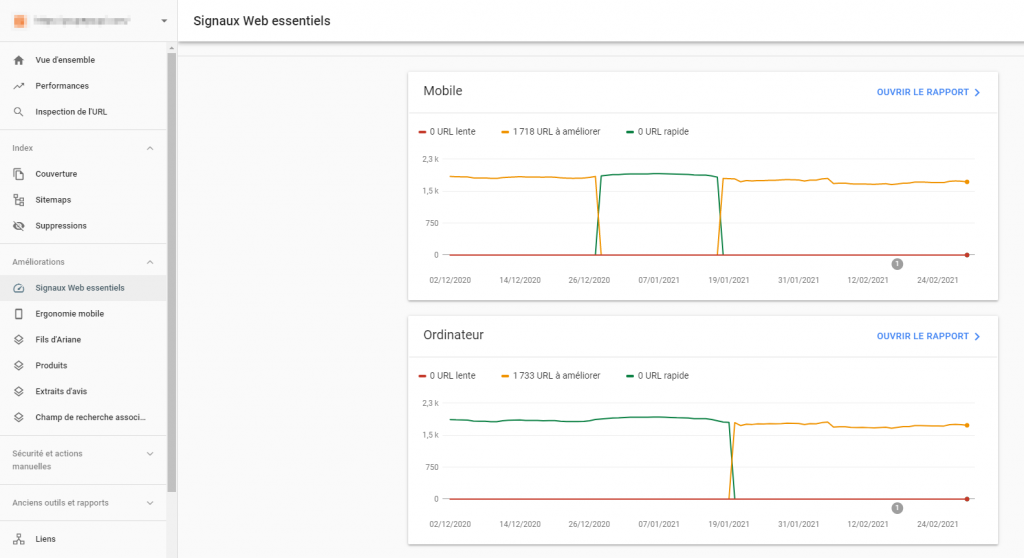 Interface Search Console